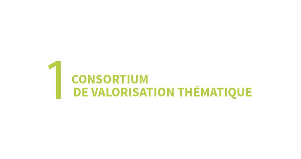1 consortium de valorisation thématique